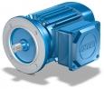 MGS asynchronní motor
